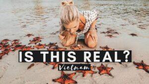 BEST STARFISH BEACH | VIETNAM'S HIDDEN TREASURE | VIETNAM VLOG #027