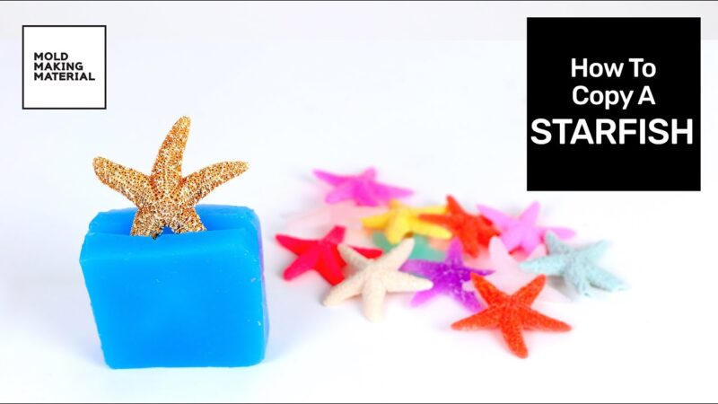 How To Copy A Starfish with Mold Making Material