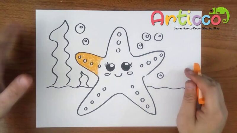 How to Draw Cute Starfish and coloring for kids