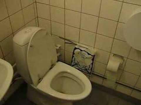 Starfish at Teknologkollegiet toilet